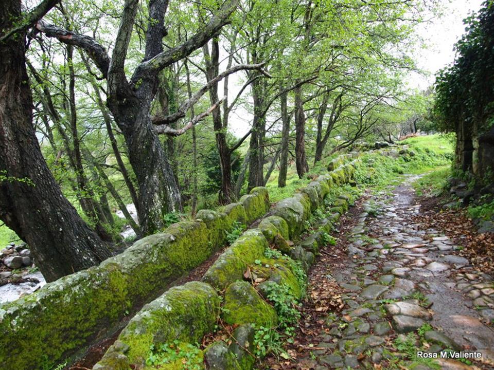 Qué Hacer Y Qué Visitar En La Sierra De Gata